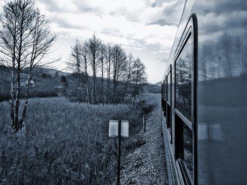 電車で見た最高の落書き00