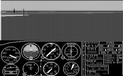 1982: Flight Simulator 1