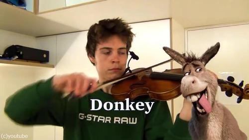 ヴァイオリニストが動物の鳴き声を演奏する04