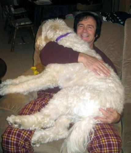 犬と仲良し07