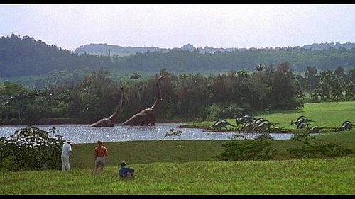 古生物学者で恐竜の研究をしている01