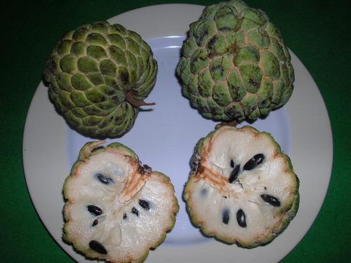 ワイルドでワンダフルな果物10選07