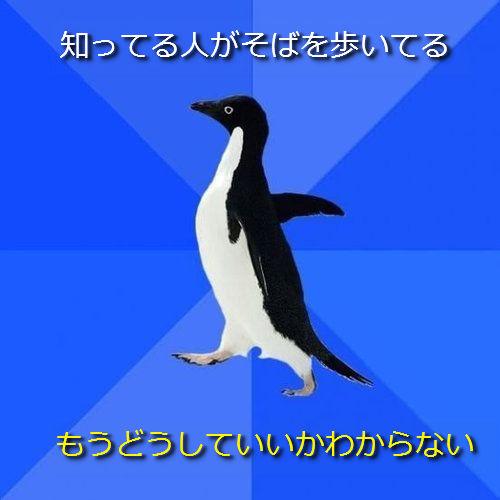 社交性のないペンギン14●ちょっと知ってる人がそばを歩いてる ─ もうどうしていいかわからない