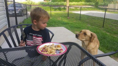 息子と愛犬の友情21