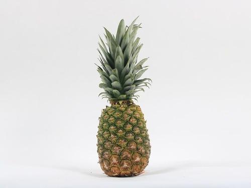 美術展にパイナップルが置かれたら00