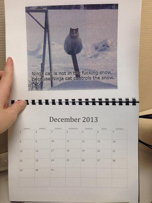 猫のカレンダー12
