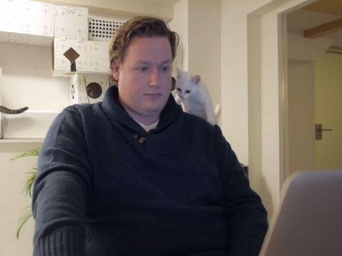 職場が猫だらけだったら02