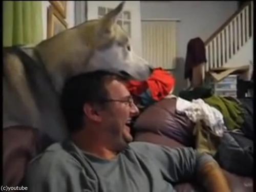 犬が頭の上に顔を乗せてくるとできる遊び03