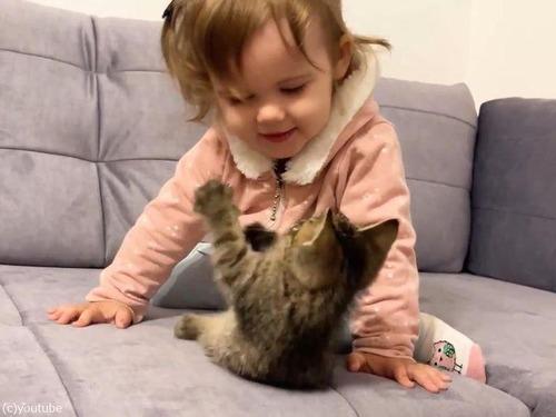 女の子の赤ちゃんと子猫00