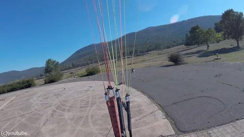 これぞオーストラリア…パラグライダー着地時にあの動物がお出迎え02
