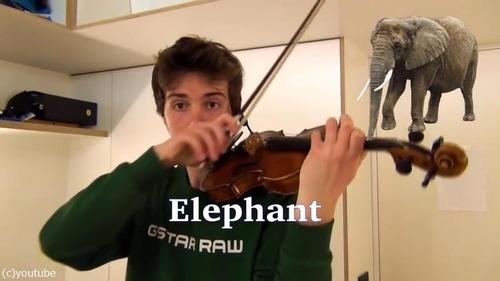 ヴァイオリニストが動物の鳴き声を演奏する08