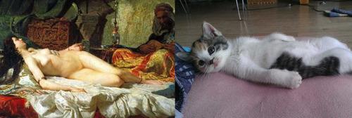 猫で再現するあの名画17