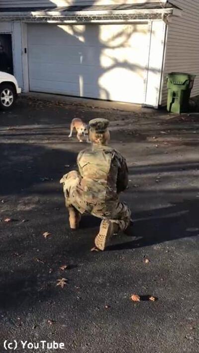 訓練から帰ってきた女性が愛犬と再会01