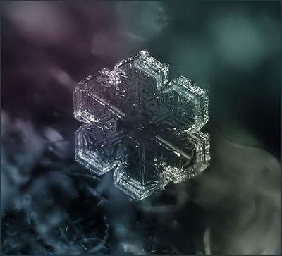雪の結晶05