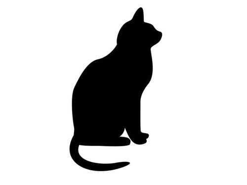 普段はかわいい猫だけど