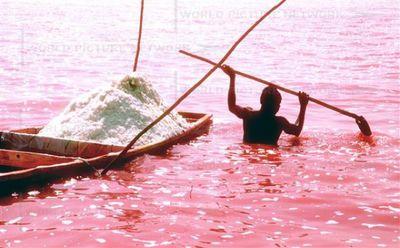 セネガルのレトバ湖02