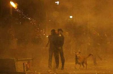 ギリシャの暴動犬02