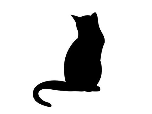 足の長い黒猫00