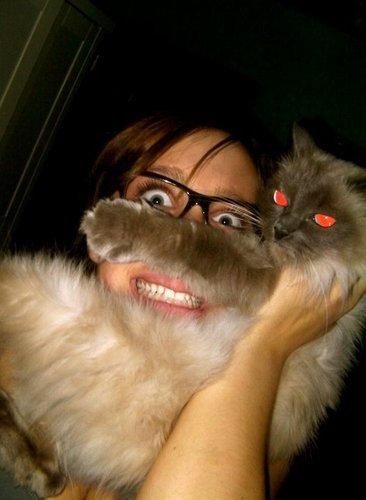 猫でヒゲ遊び19