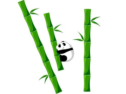 今日ランチを頼んだら竹に入ってた00