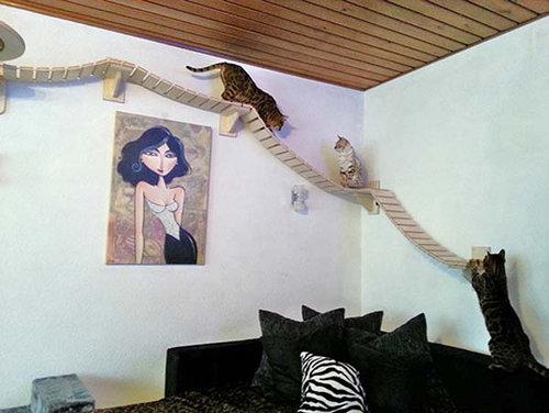 猫用のつり橋02