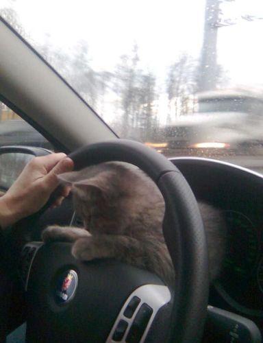 ロシアの危険な運転03