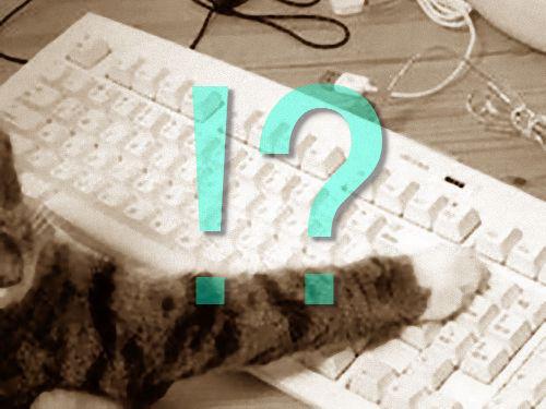 キーボードに座る猫00