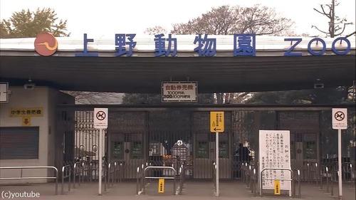 ハイビジョン映像で観る92年の東京がグッとくる07