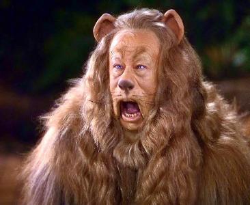 ライオンがいる02