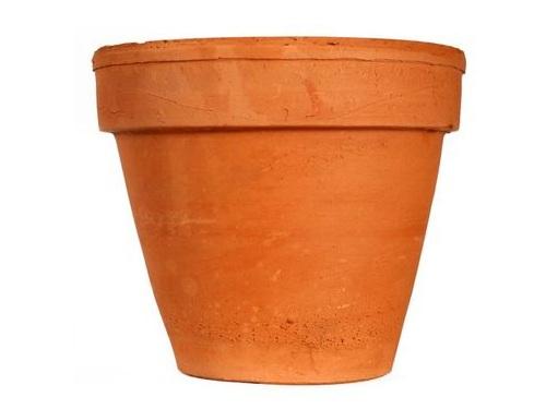 植木鉢をかぶった謎の女性00