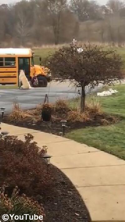 子どもと一緒にスクールバスを待つ犬01