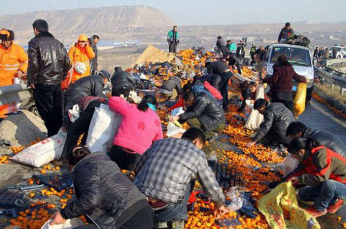 中国でみかんトラックが横転した結果06