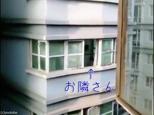 向かいの犬を呼ぶ方法00