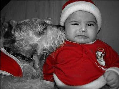 赤ちゃんとペット09