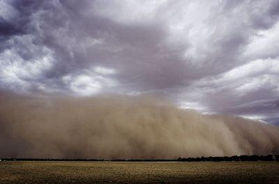 オーストラリアの干ばつ05