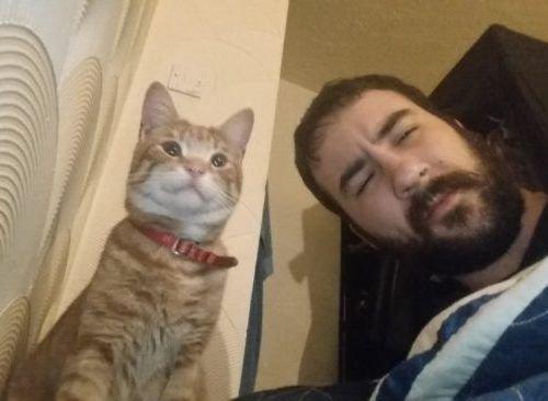 帰宅したら…見知らぬ猫がいる13