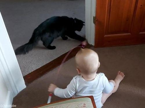 猫を操る赤ちゃん03