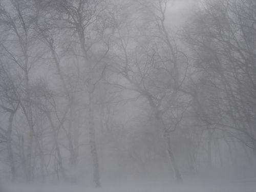 吹雪のときの運転00