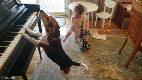 ピアノ弾き語りをする犬と踊る女児03