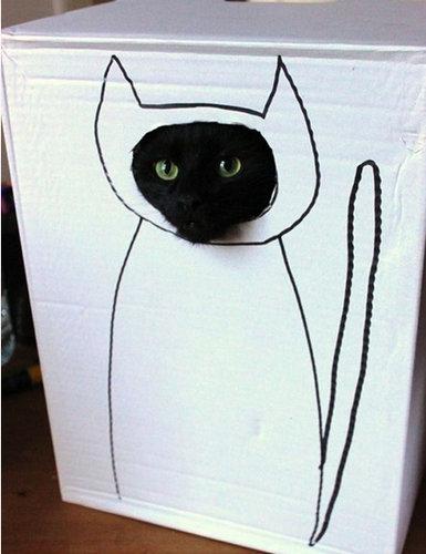 ダンボール猫アート03