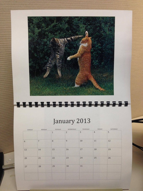 猫のカレンダー01