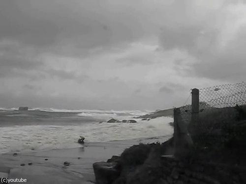 「嵐のときにビーチに近づいてはいけない理由」11