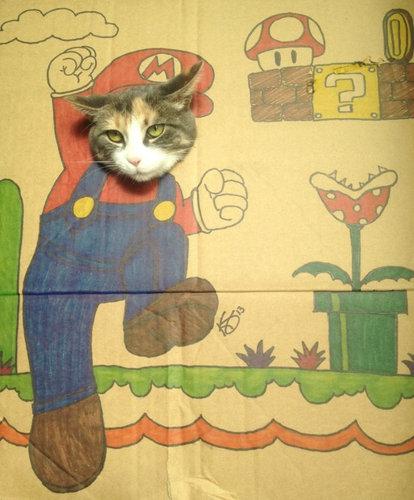 ダンボール猫アート11