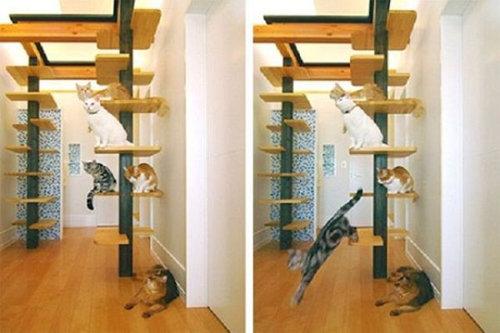 猫の家具25