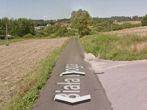 Googleストリートマップに写っていたウサギ00
