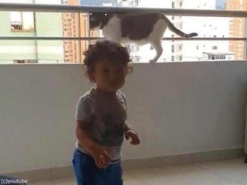 幼児を守る猫04