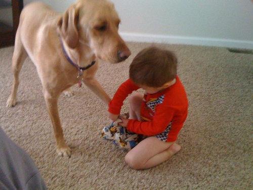 息子と愛犬の友情22