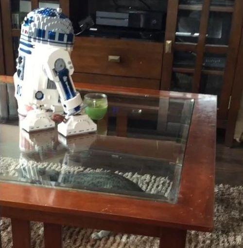 猫が「R2D2のレゴ」に恐れおののく04