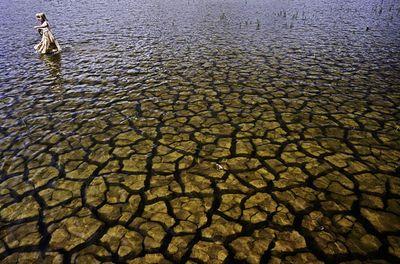 オーストラリアの干ばつ07