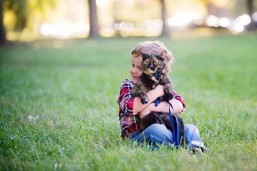 うちの息子は生まれたときから猫が大好き02